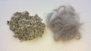 Kleintierstreu und Katzenhaare