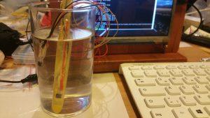 Neue Temperatursensoren für Honigbienen aus dem 3D-Drucker