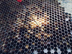 reichlich Poeeln und Honig in den Waben