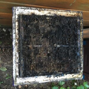 Flutopfer Bienen Mini Plus mit Absperrgitter