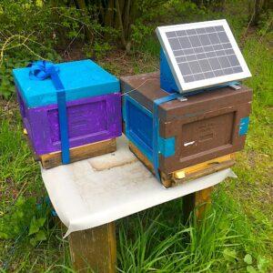 Ableger Mini Plus mit energieautarken Temperatursensoren
