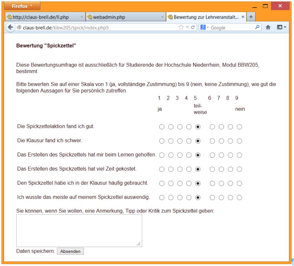 Screenshot Online-Fragebogen