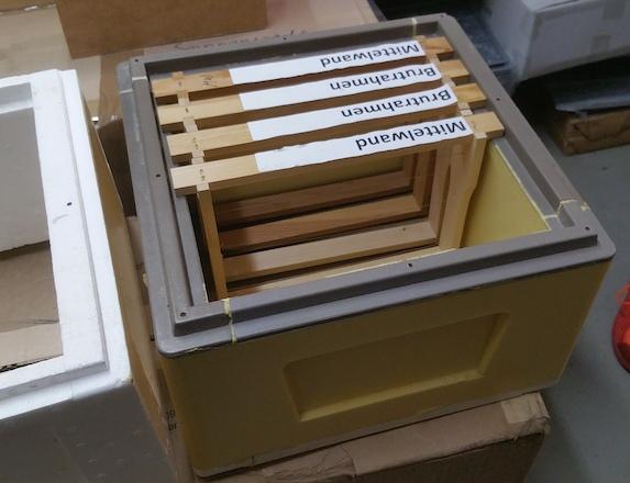Beispiel für eine kleinere Beutenform - die MiniPlus in Holz, Styropor oder Polyurethan.